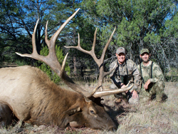 Monster Arizona Elk with some added character!!!
