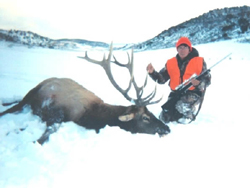 The Shelton Ranch elk hunters may enjoy hunting hundreds of elk as they migrate to their winter range.