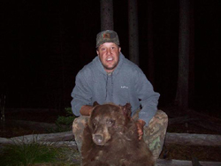 Wild Idaho Bear